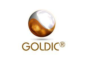 20160103_Goldic_Logo